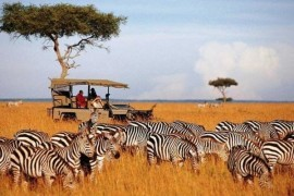 African Extravaganza With Kenya