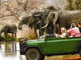 South African Splendour