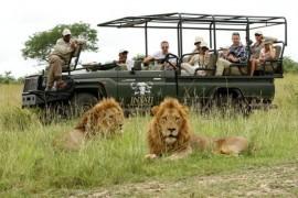Splendid South Africa With Kruger